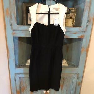 NWT Calvin Klein dress size 6